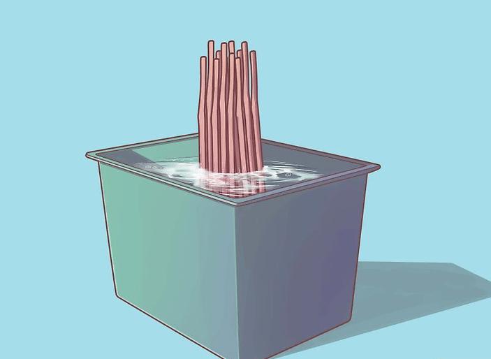 Osiers dans bac d'eau